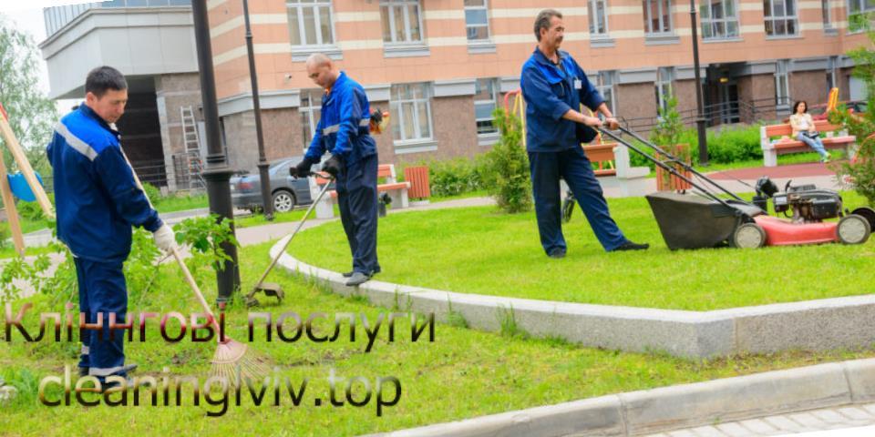 Благоустрій території у Львові
