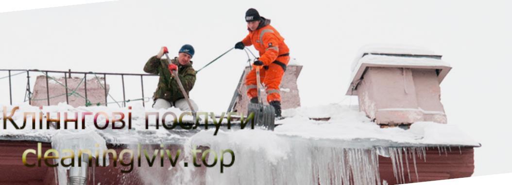 Прибирання снігу з дахів Львів